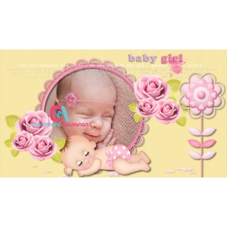 ☆The first album of Baby Shower ☆Transitions Free Proshow Producer