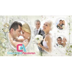 Classic Wedding Video (Template, Styles, Proshow Producer)