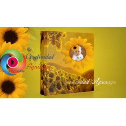 Sunflower party for children Proshow Producer Project